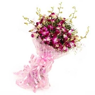 Buy 8 Orchid Flowers Bunch